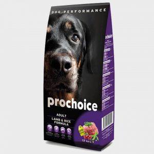 prochoice-adult-lamb-1.jpeg