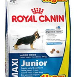 royal-canin-maxi-junior-4-kg.jpg